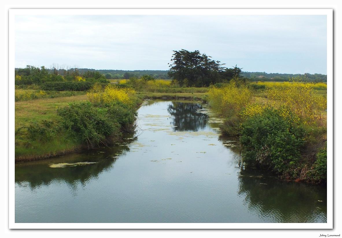 Chenal (corde) dans le marais