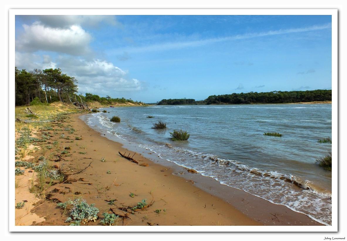 Estuaire du Payré