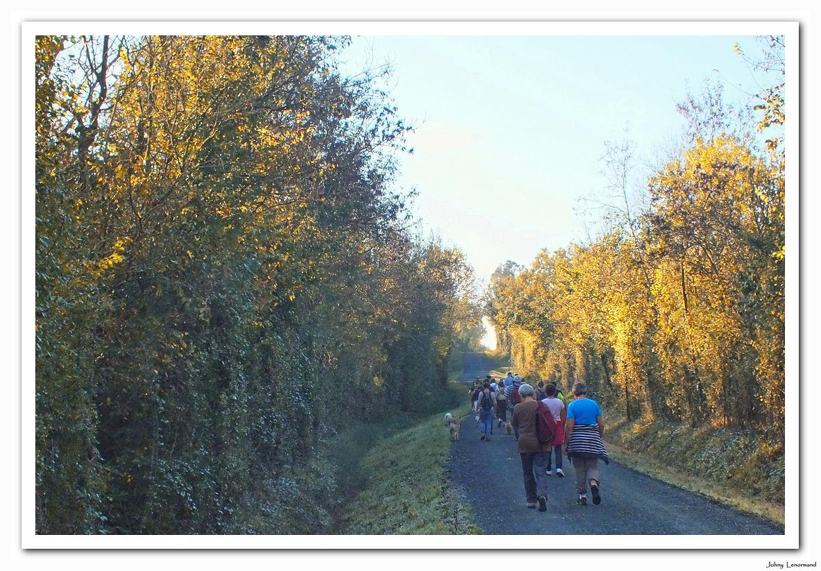 Sur les chemins de Saint Hilaire la Forêt