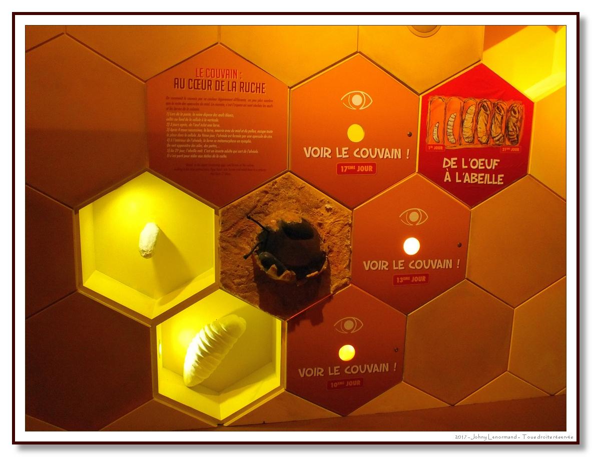 La Folie de Finfarine - La ruche géante