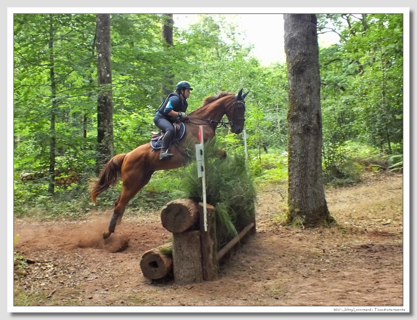 Fête du cheval à Moutiers les Mauxfaits