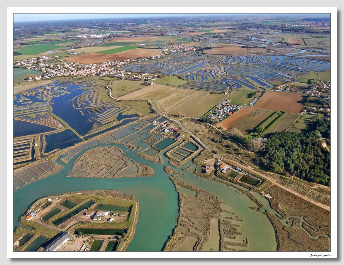 Marais de Talmont Saint Hilaire (Vendée)