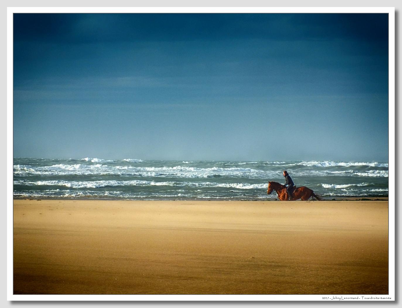 Chevaux sur la plage du Veillon
