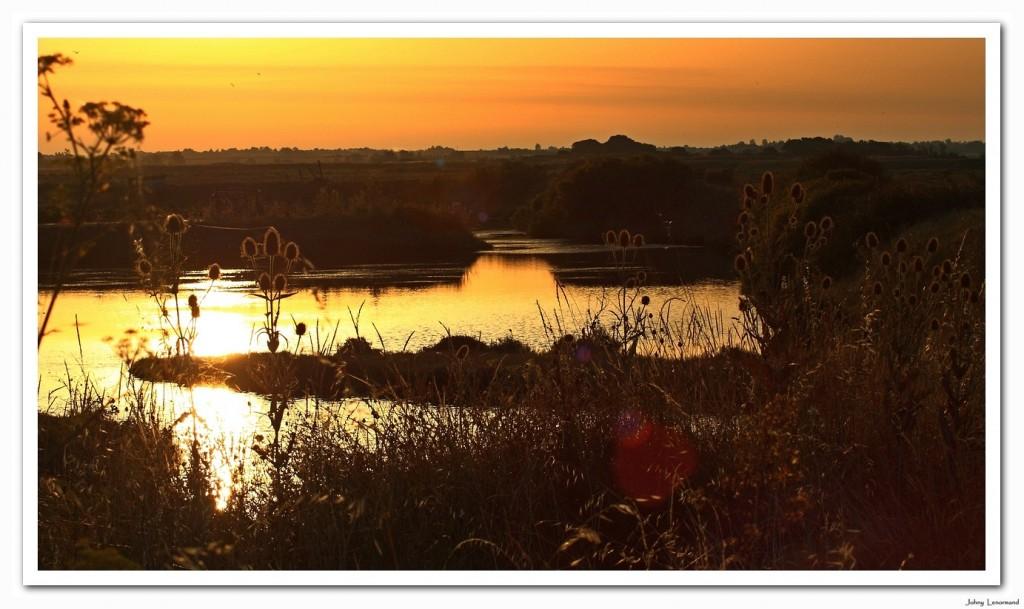 Soleil levant sur le marais