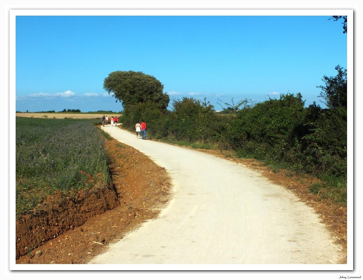 Piste cyclable et pédestre Bourgenay - La Guiitière