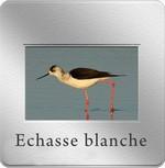 diapo_echasse