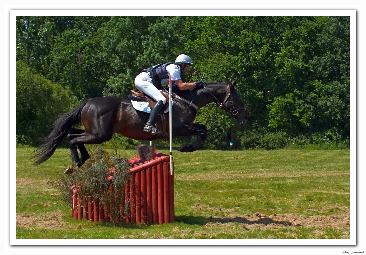 Concours complet d'équitation, épreuve de cross