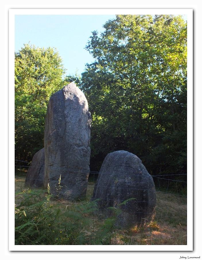 Menhirs à Avrillé