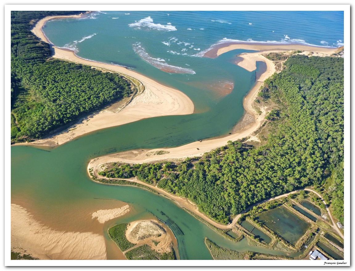 L'estuaire du Payré