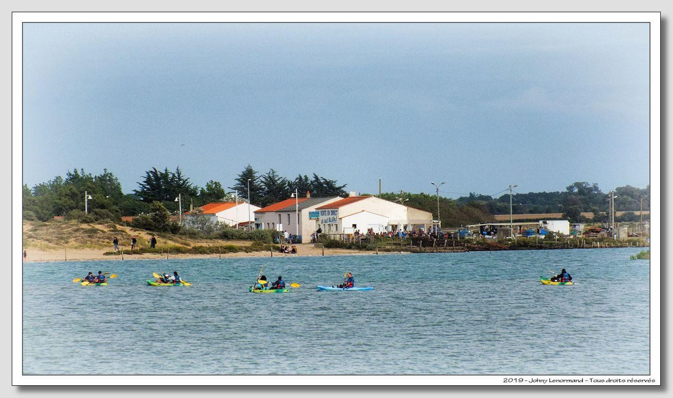 Kayaks sur le Payré