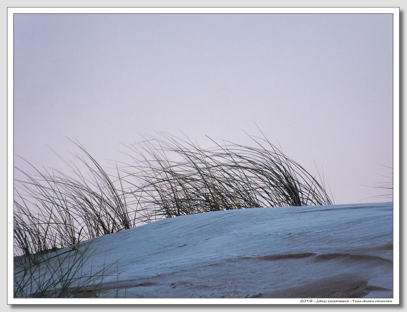 Givre sur le sable du Veillon