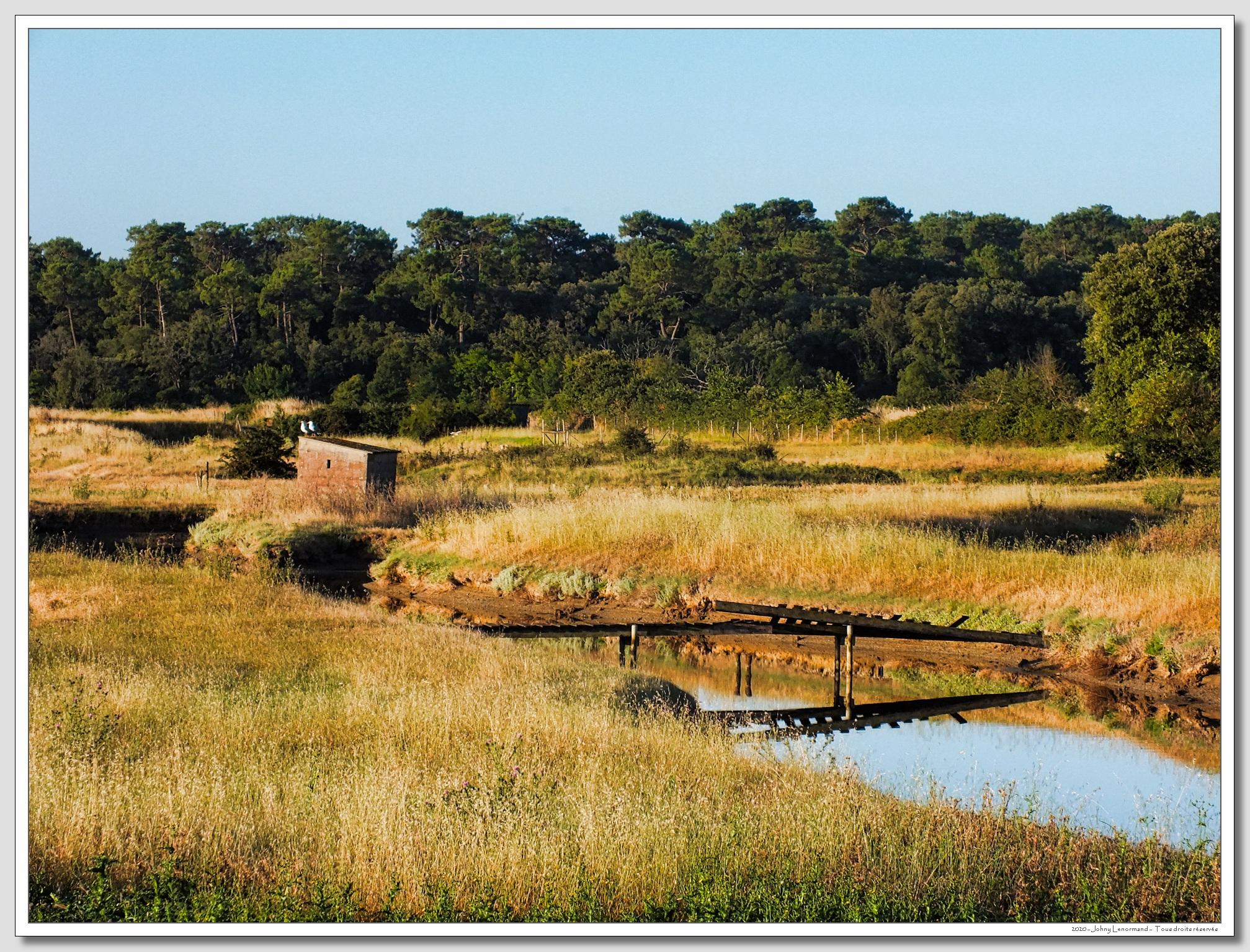 Le marais Neuf à Talmont Saint Hilaire (Vendée)