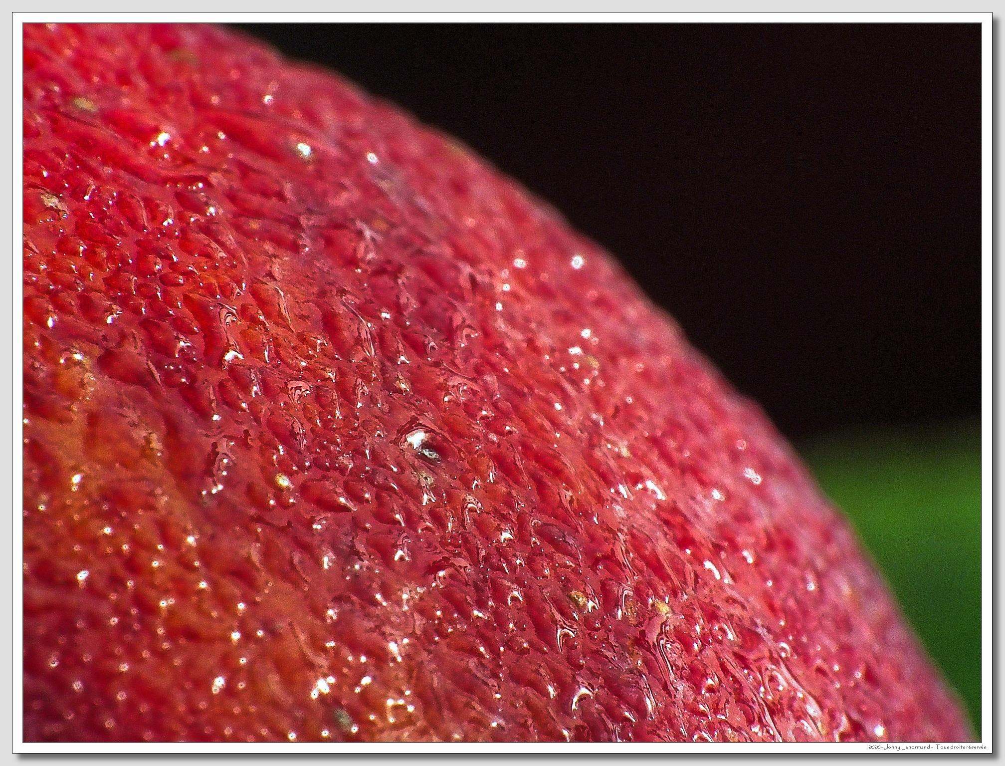 Rosée sur une pomme