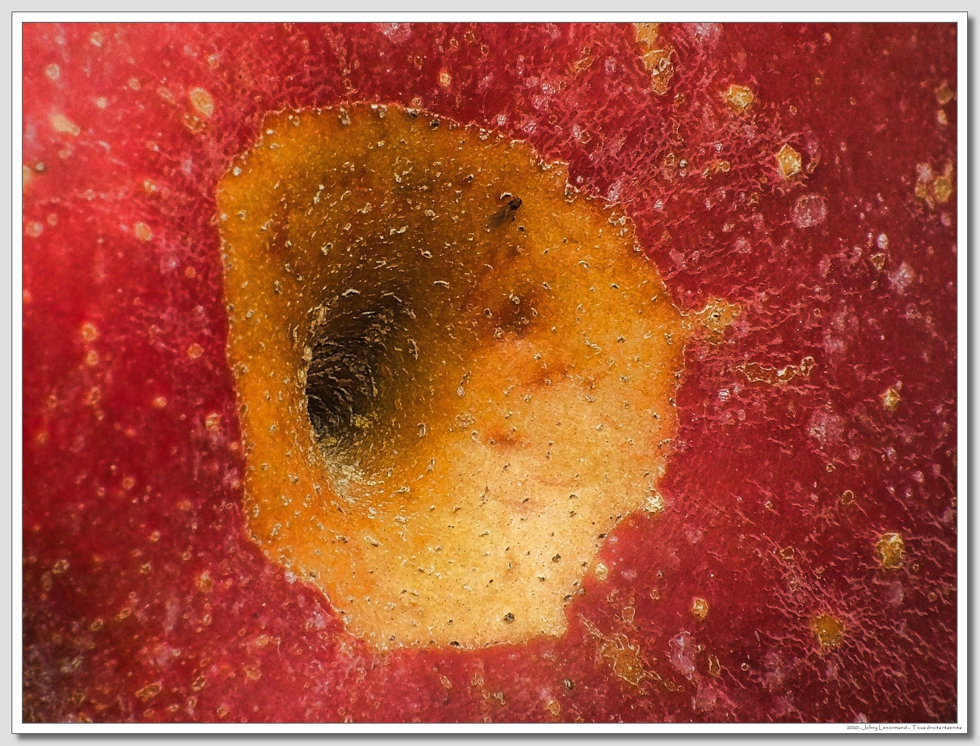 Peau de pomme