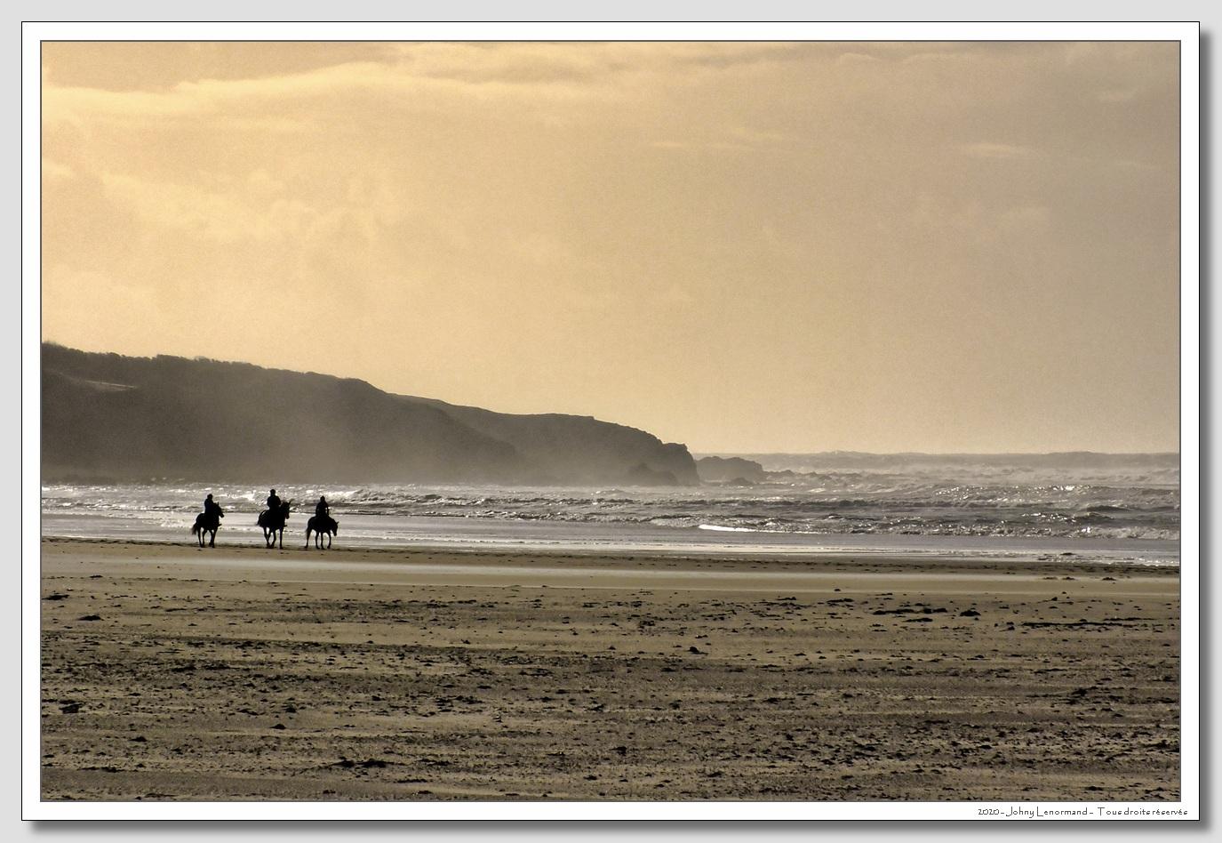Chevaux sur la plage du Veillon à Talmont Saint Hilaire (Vendée)