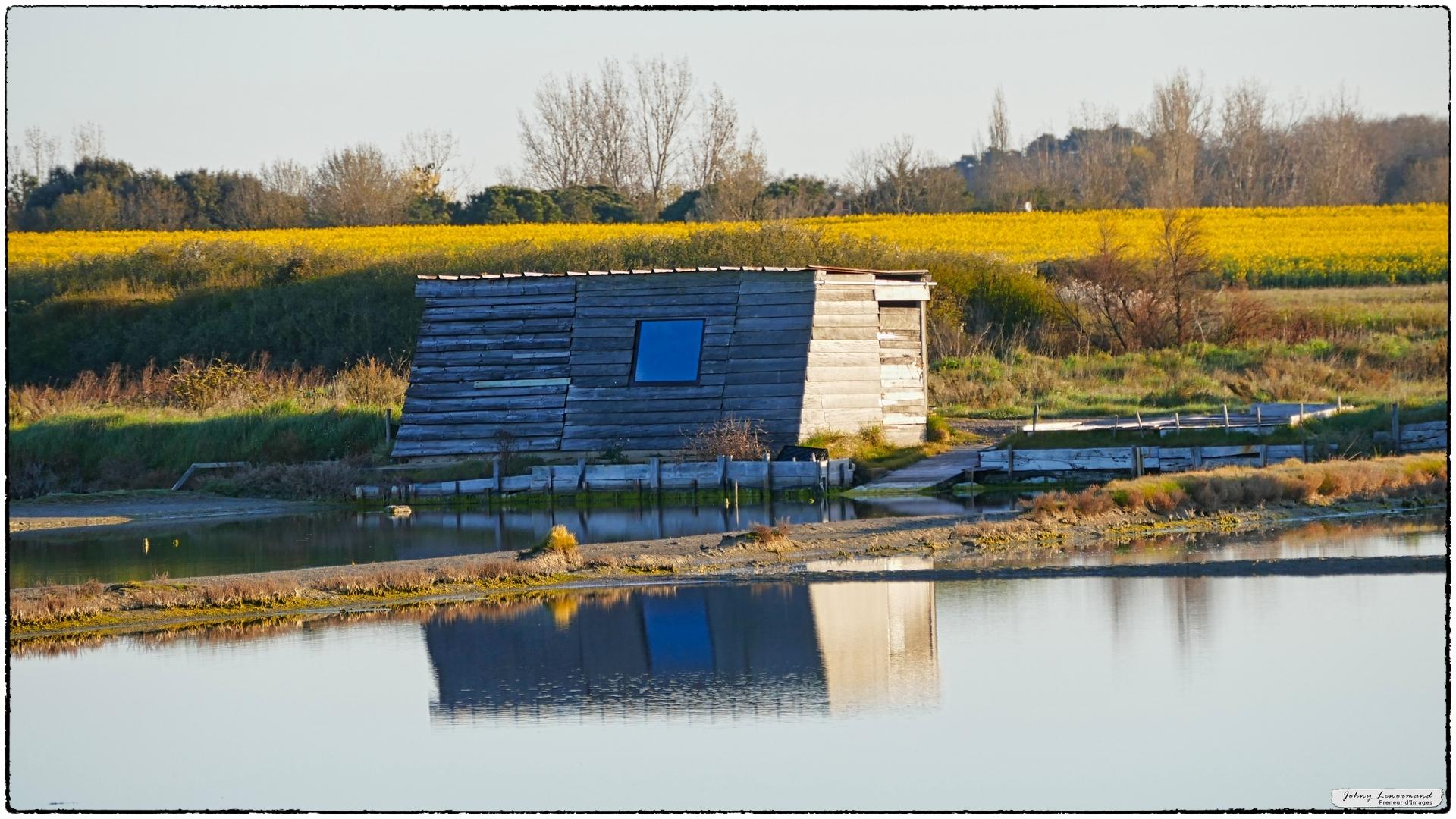 Cabanes de saunier dans le marais de la Guittière